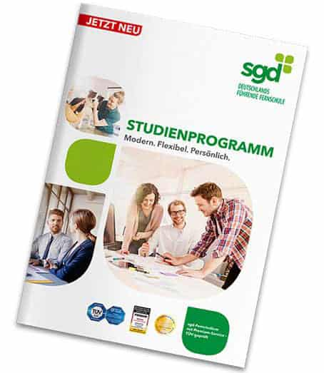 SGD Studienhandbuch 2017